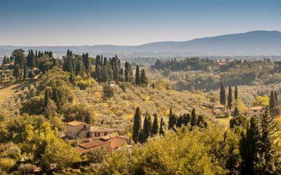 Online Weinseminar: Weinreise Italien – Der Franzose geht fremd
